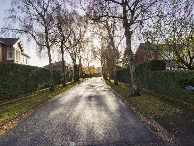 Birchwood Avenue Hutton