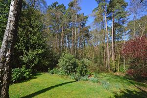 Kingswood Firs Grayshott