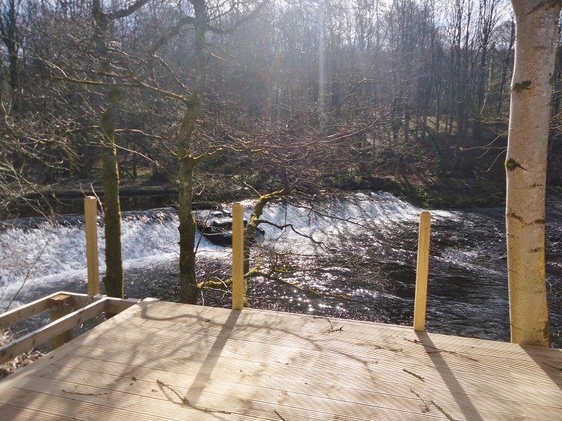 Rivers Edge Dollarfield