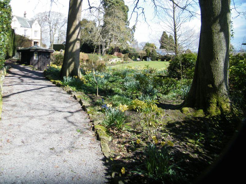 Shaws Lane