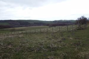 Lawsons Farm Whittonstall