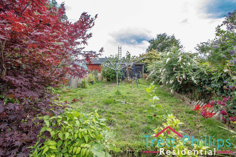 Elderbush Lane Catfield