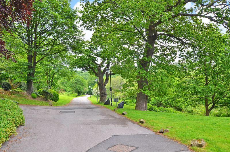 Woofindin Avenue Whiteley Woods