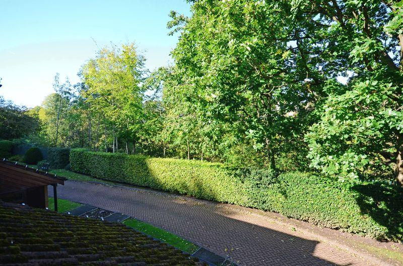 Grove Road Totley