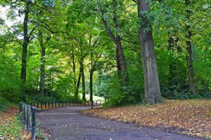 Granville Road Norfolk Park
