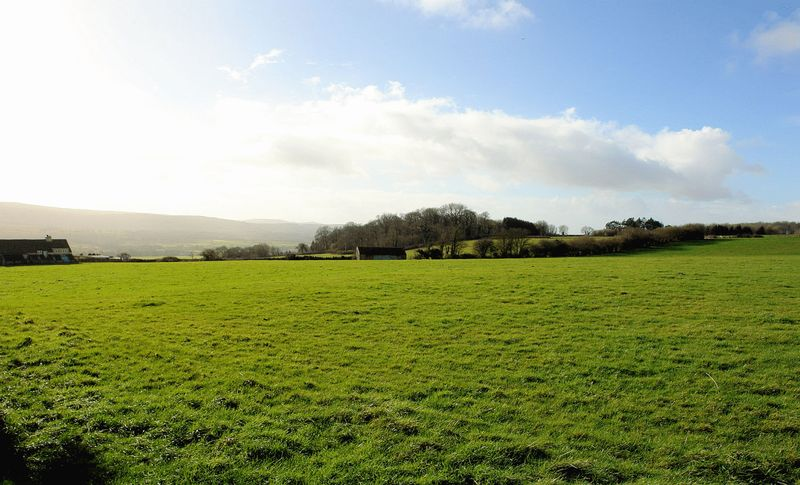 Winters Lane Redhill