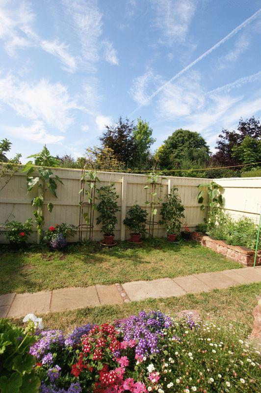 Garden alternative angle