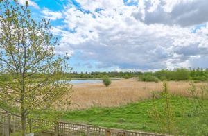 Willow Sage Court Stockton-On-Tees