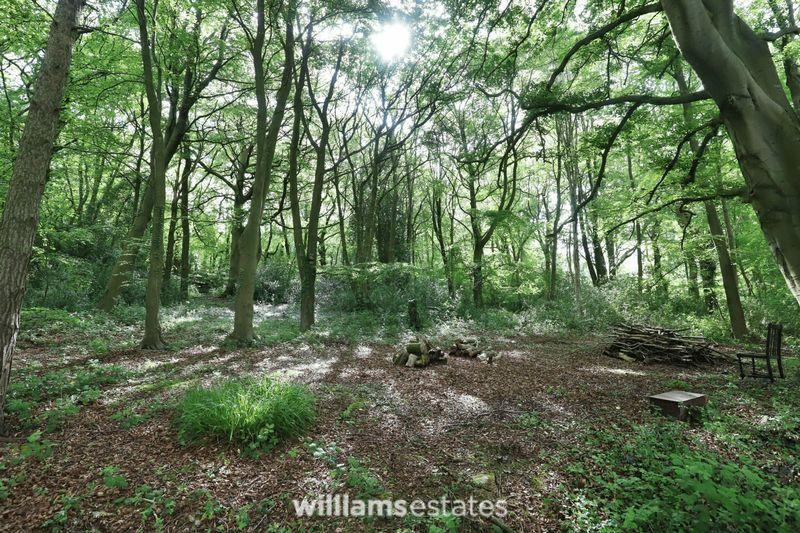 Woodland One