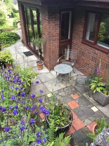 Patio and Bluebells