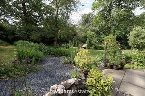 Side Garden Two