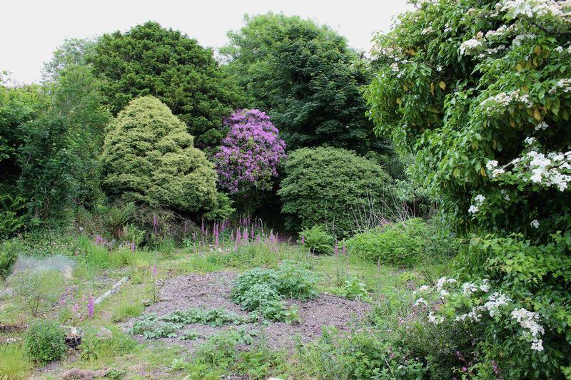 Barton Lane Central Treviscoe