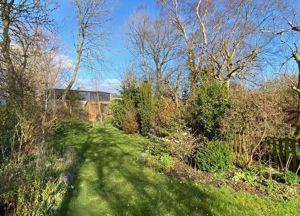 Ansford Hill