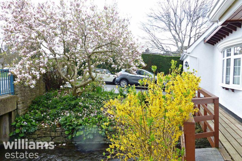 Front Magnolia