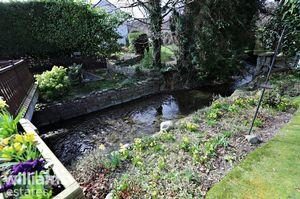 Rear Garden Three