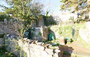 garden 02