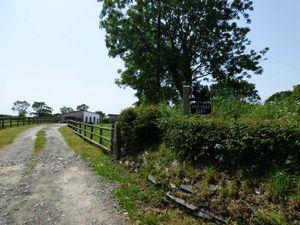 Thorndon Cross