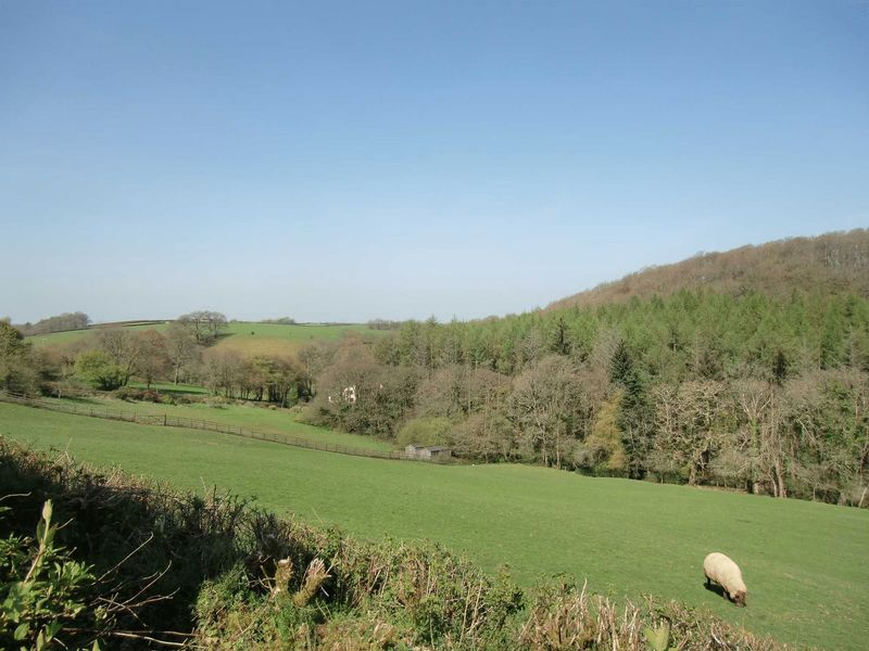 Cottwood Riddlecombe