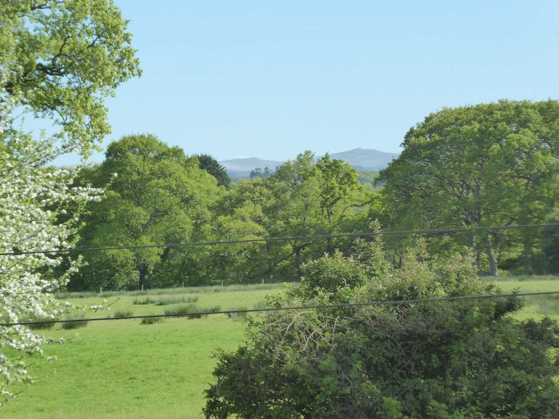 View of Dartmoor