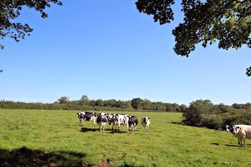Raddon Farm Okehampton