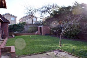 Grange Wood