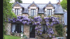 Lassay les Chateaux