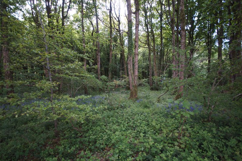 Hillgrove