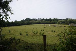 Hilliers Lane Wookey