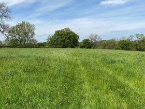 Neighbourne Oakhill