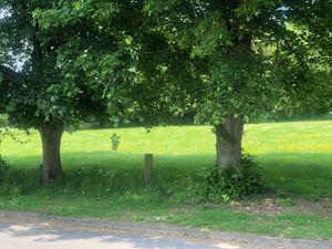 Claymoor Park Booker