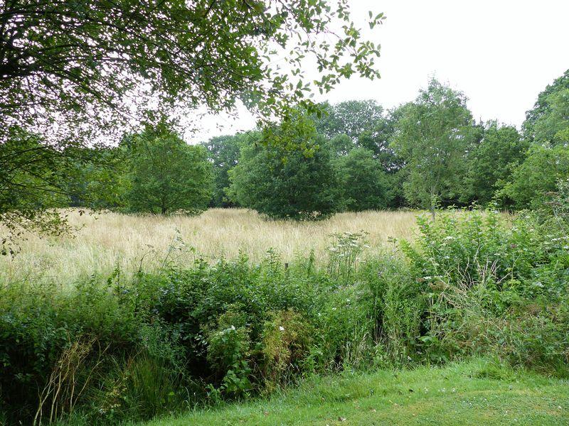 westdene meadows
