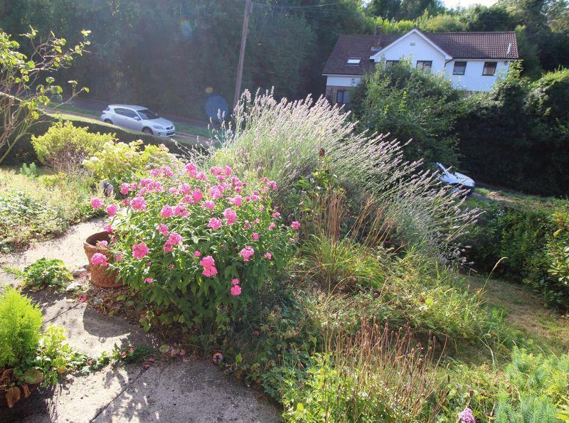 FRONT GARDEN FROM THE HOUSE
