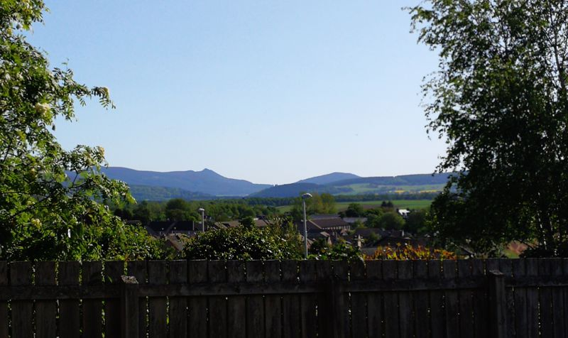 Burnbank View