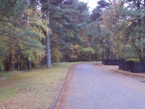 Woodland Wynd Bandley