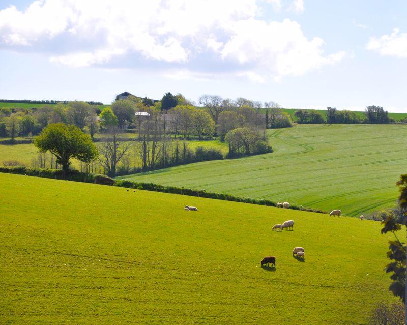 10 Lords Meadow Tregony