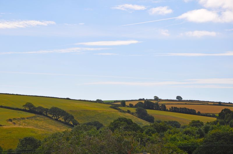 Lords Meadow Tregony