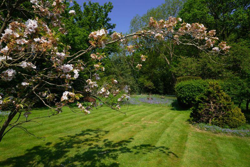 Cherry Tree Lane Heronsgate