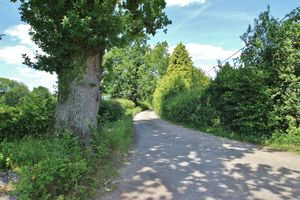 Tolhurst Lane Wallcrouch
