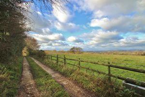 Newick Lane