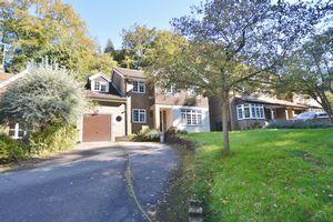 Shackstead Lane