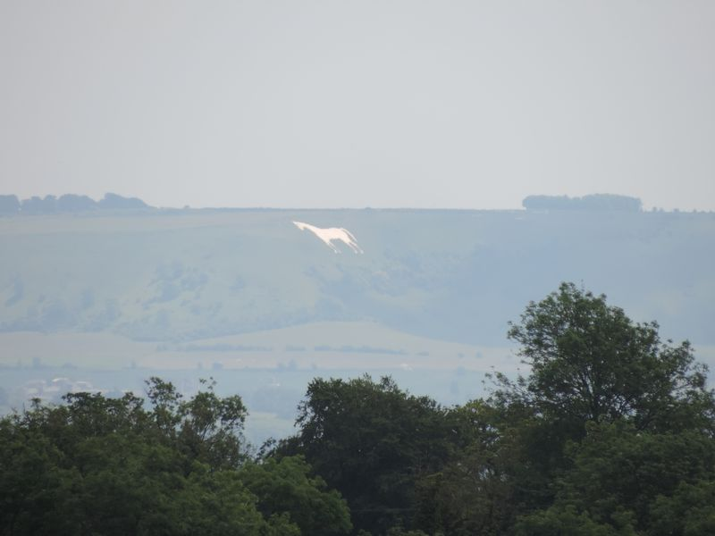 View of Westbury White Horse