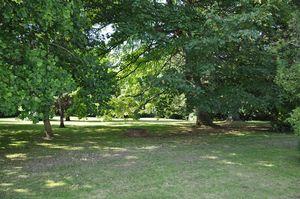 2 Heavitree Park Heavitree