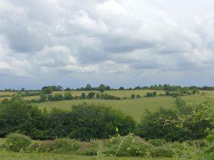 Frieth Road