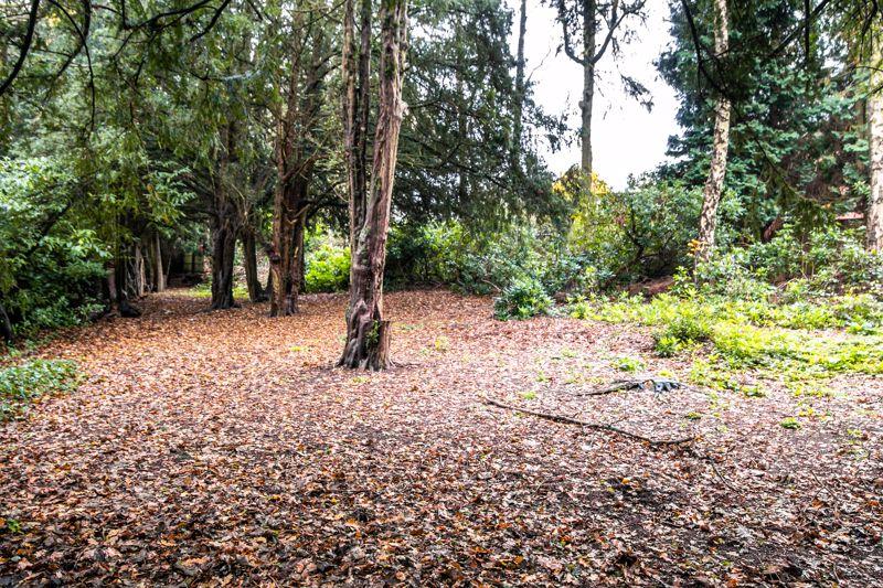 Roman Road Little Aston Park