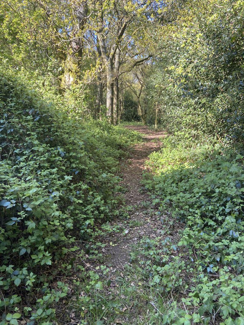 Worcester Lane