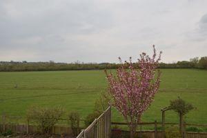 Blackthorn Way
