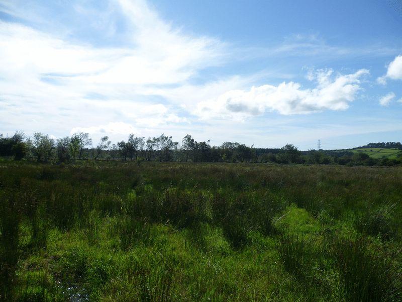 Land at Llanddeiniolen