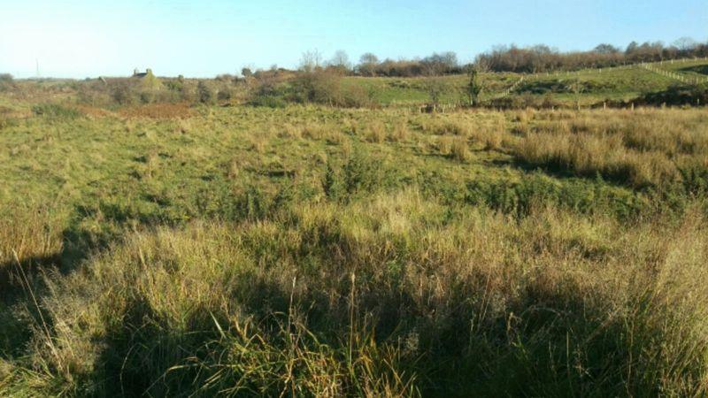 Land at Llansadwrn