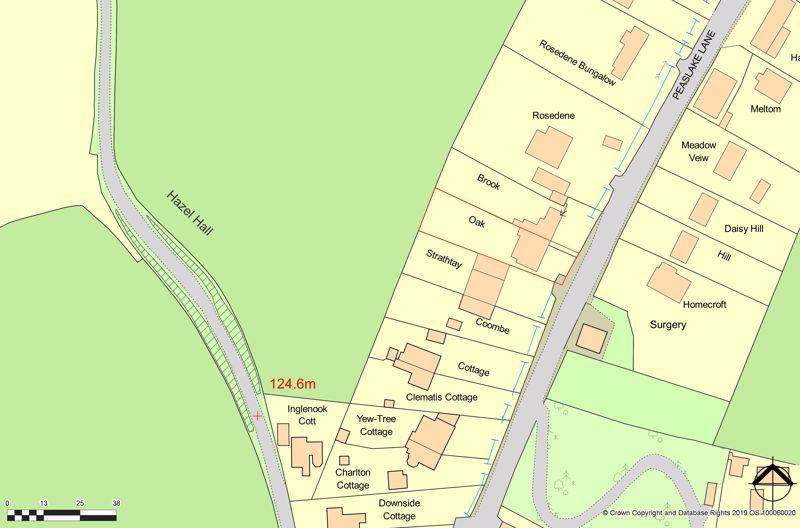 Peaslake Lane