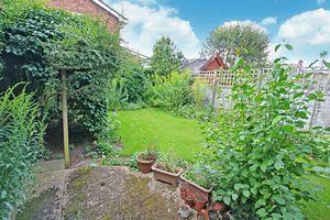 Garden - summer picture